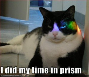 I did my time in Prism